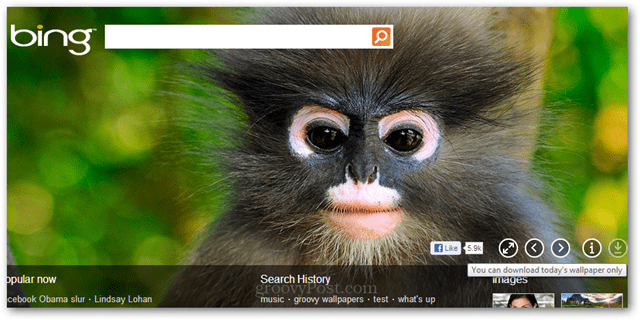 use bing homepage images as wallpaper