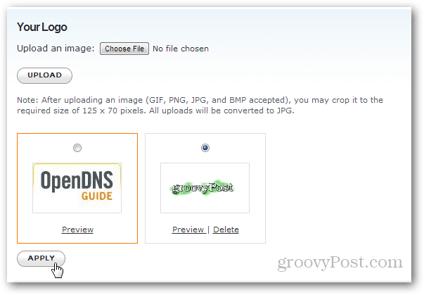 apply a custom branded logo to opendns