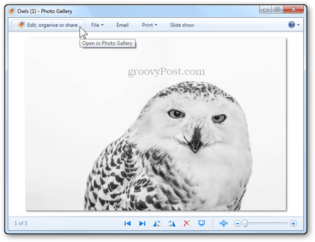 photos resizing tutorial windows live photo gallery eit organize share