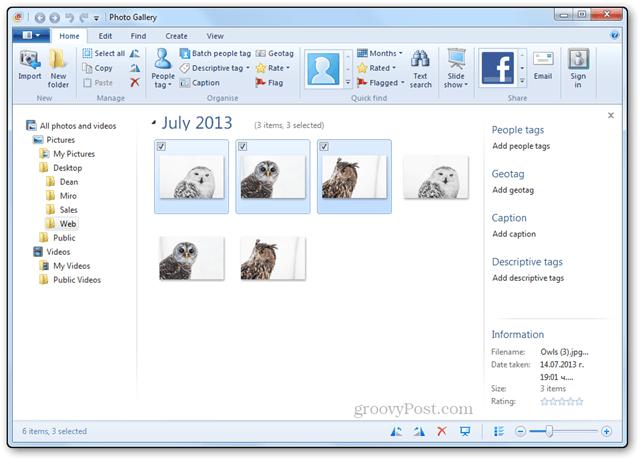 photos resizing tutorial windows live photo gallery main screen resized photos and original photos