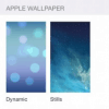 Dynamic Apple Wallpaper