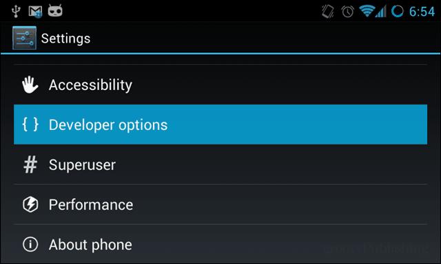 Developer Options in settings menu