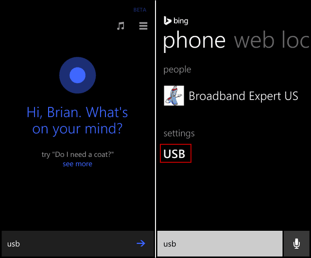 Cortana USB Search