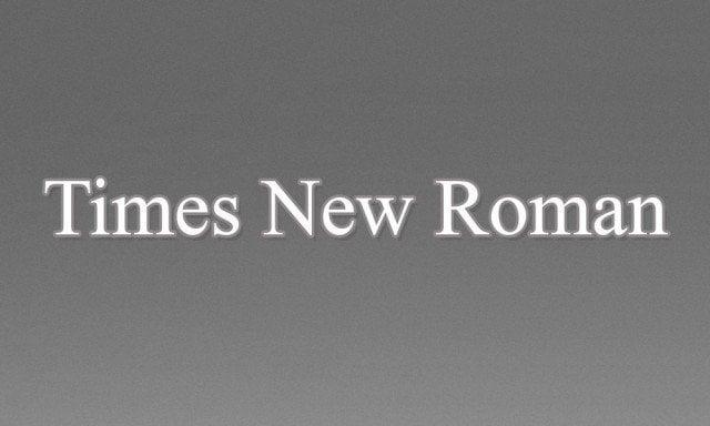 2 - Times New Roman