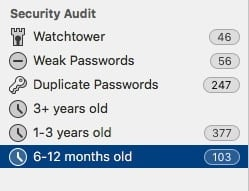 securityaudit
