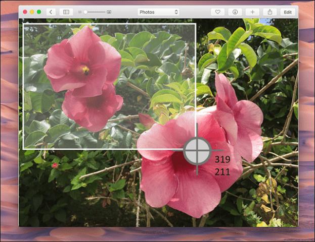 Mac OS X 2