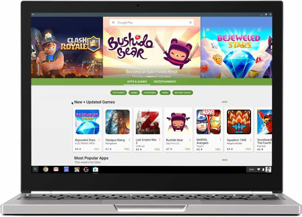 Play Store Chromebook