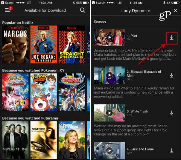 Netflix Beginners Guide for Managing User Profiles and More