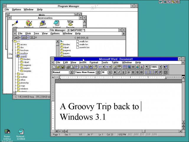 windows 3.1 desktop environment