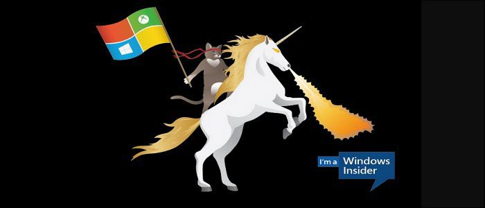 Windows Insider Ninja Cat Unicorn