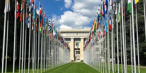 united nations international