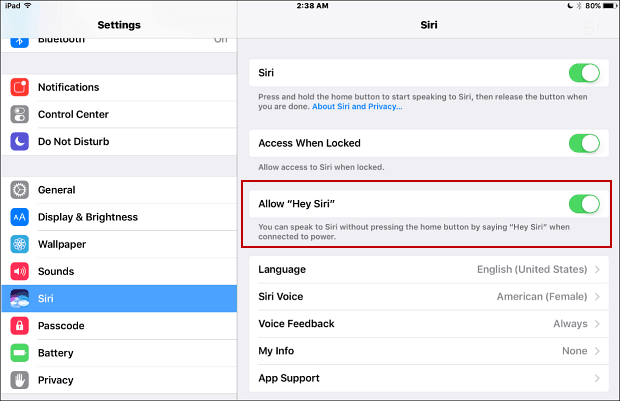 ipad-mini-siri-settings