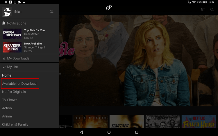 Download Netflix to Fire HD 10