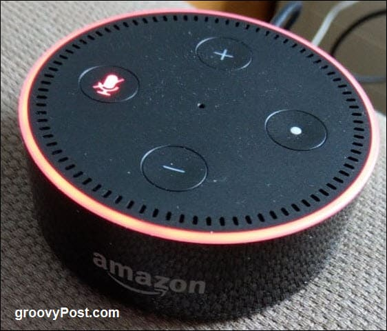 Bought Your First Amazon Alexa? Here's How To Set It Up | Tech News 7
