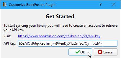 Enter the API Key on the Customize BookFusion Plugin dialog box in Calibre