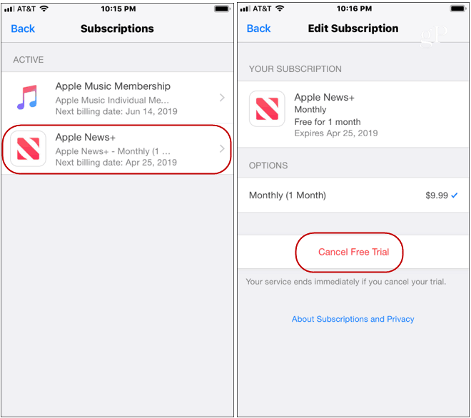 Cancel Apple News Plus Subscription