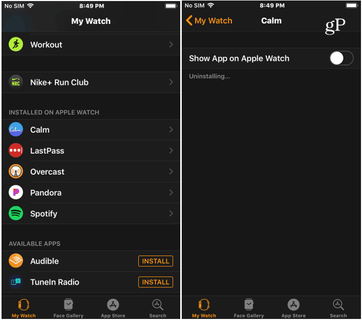 Remove Watch App from iPhone