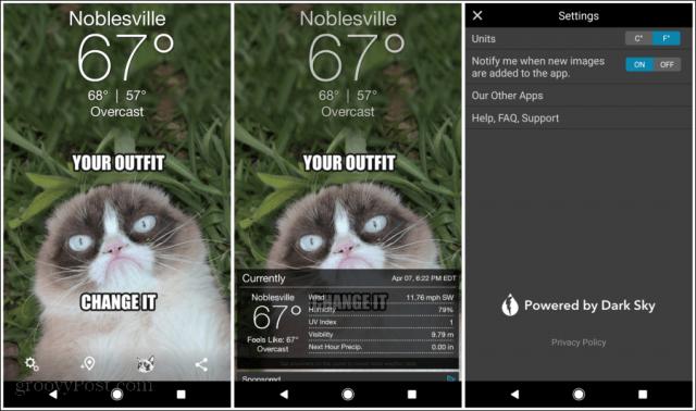 grumpy cat weather app