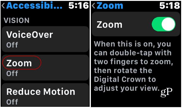 Apple Watch Zoom