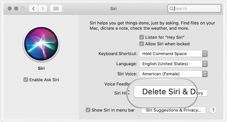 Delete Siri History on Mac