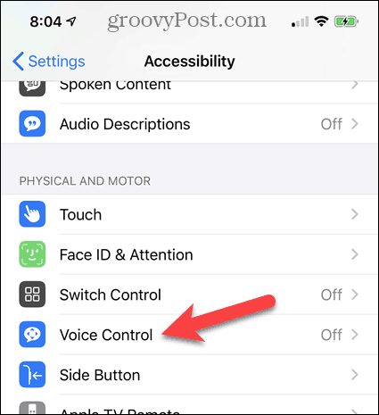 Tap Voice Control in iPhone Accessibility Settings