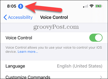 iPhone Voice Control enabled