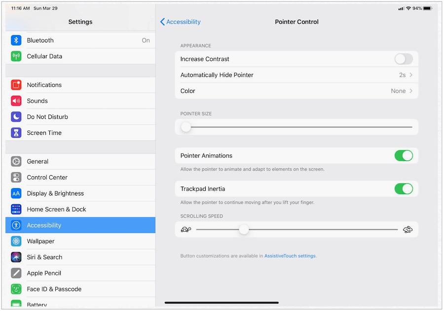 iPad Pointer Control