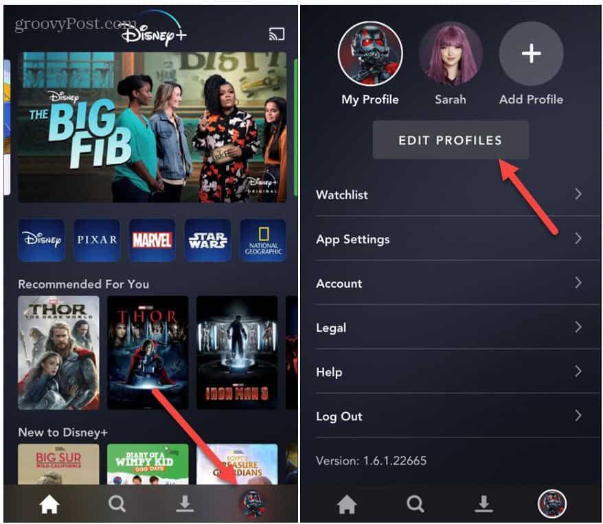disable autoplay disney plus app