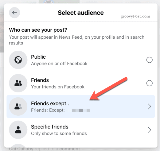 Selecting Facebook post audience visibility