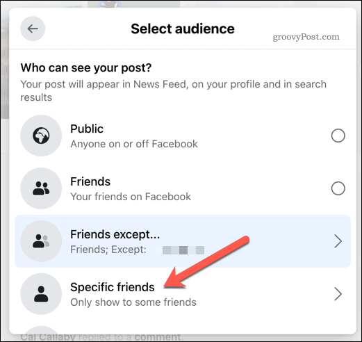 Select Specific Friends in the Select Audience menu