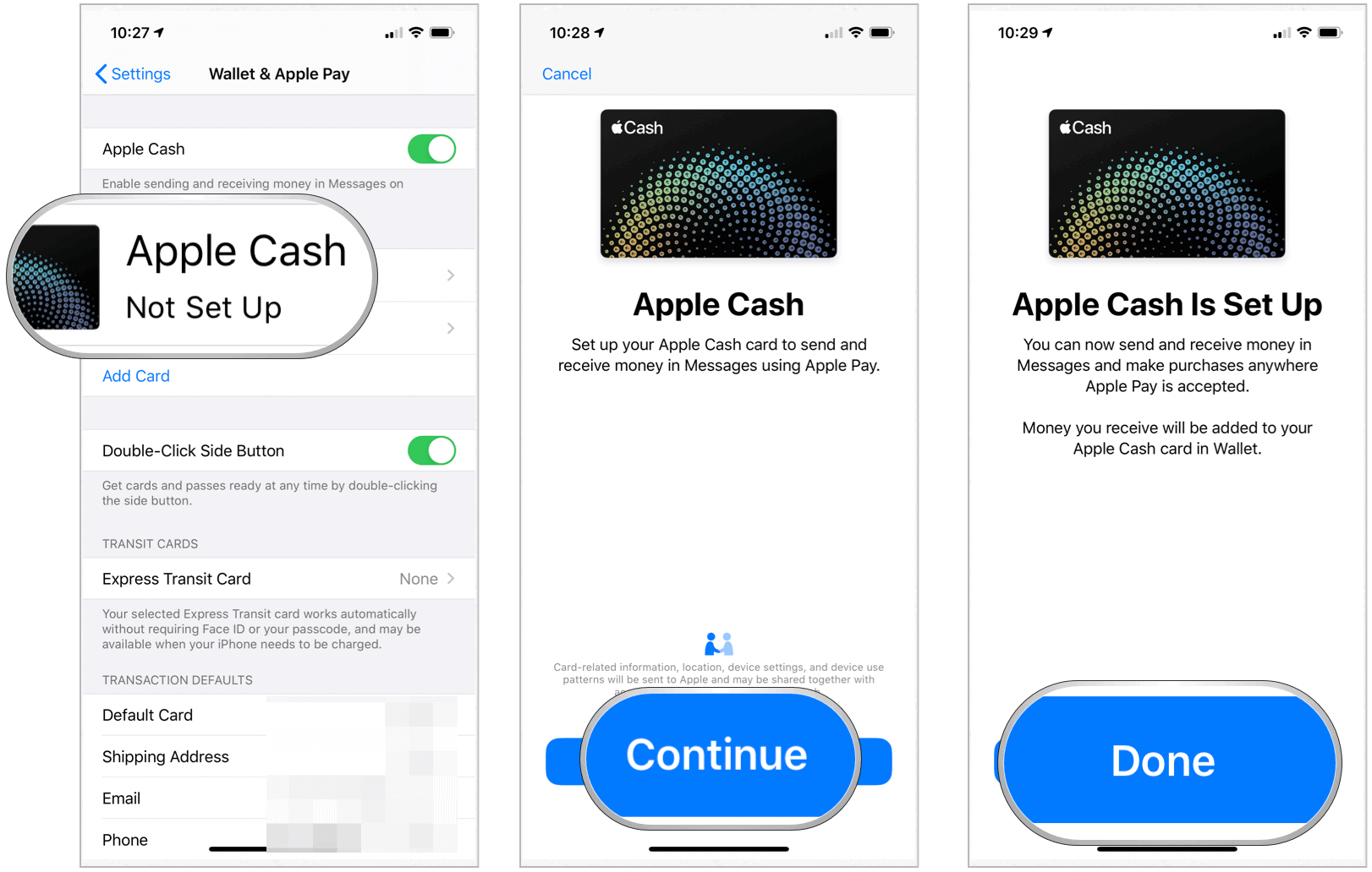 Apple Cash setup