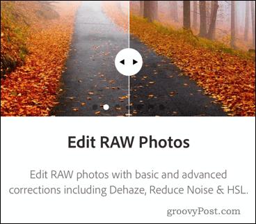 Photoshop RAW Files
