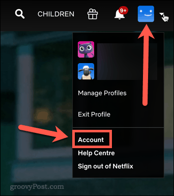 Netflix account icon