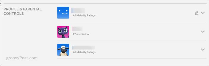 Netflix profiles list