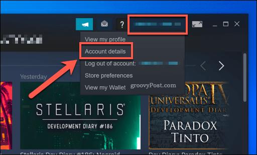 Steam Account Details option