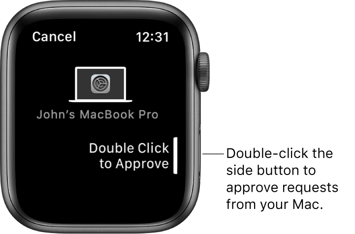Apple Watch approve request on Mac