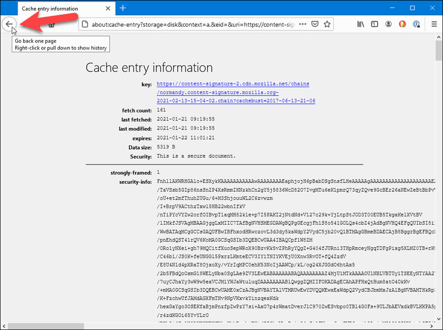 Cache entry information in Firefox