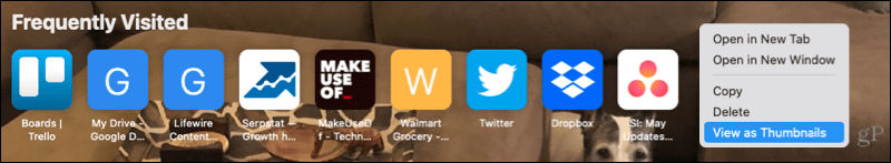 Frequently Visited on the Safari Start Page