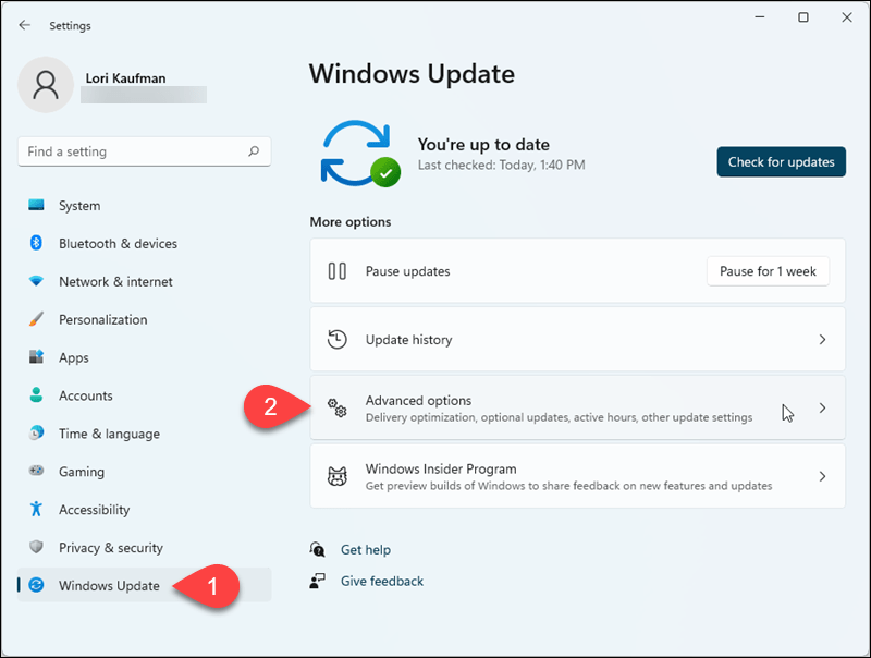 Go to Windows Update > Advanced options in Windows 11 Settings