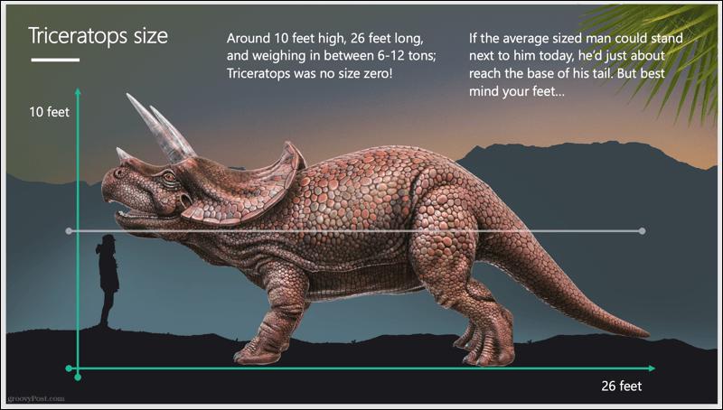 Triceratops Slideshow