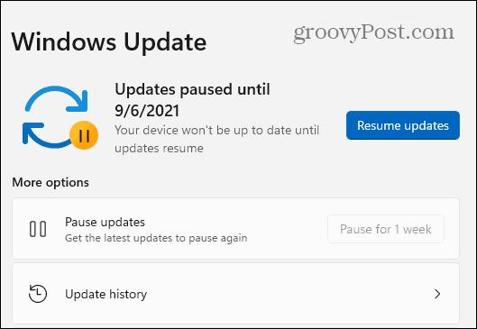 Windows 11 Updates Paused