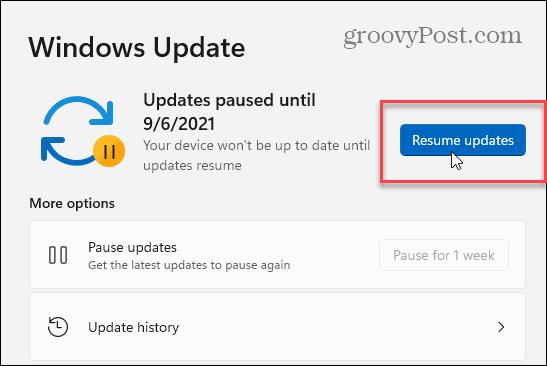 Resume Windows 11 Updates