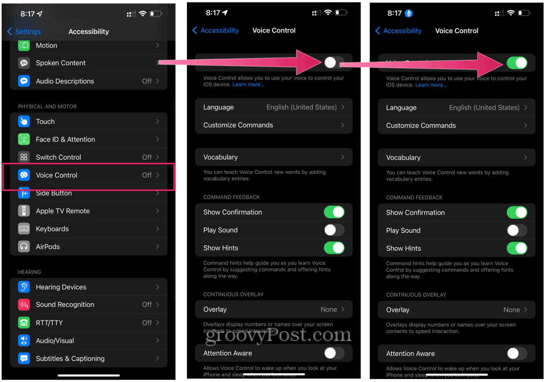 iPhone 13 Voice Control